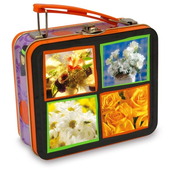 Lunch Tin Amp Handle Tins Lunch Boxes Metal Lunch Boxes